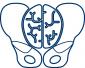 MOHEDO IMG Logo